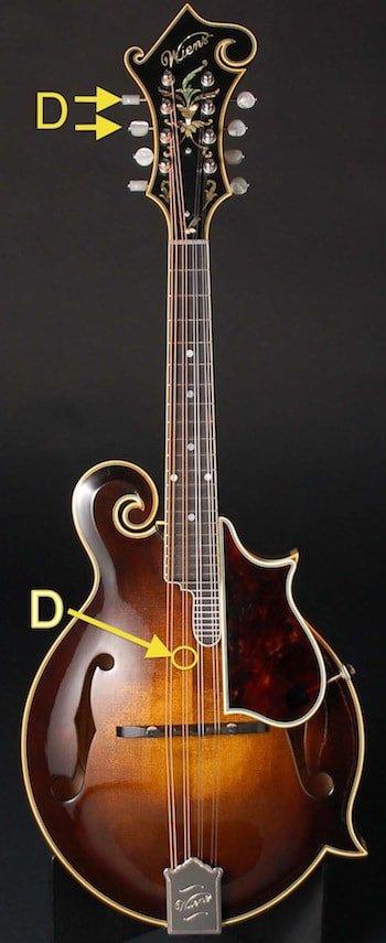 Gibson D-min