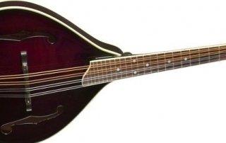 mandolin ready for setup