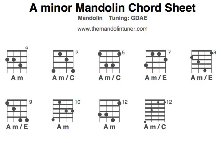 Famous Em Chord Mandolin Vignette Basic Guitar Chords For