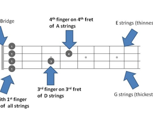 C# / Db mandolin Chords – Quick Reference with 72 chords fretboards