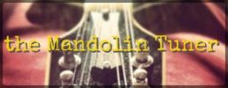 the Mandolin Tuner