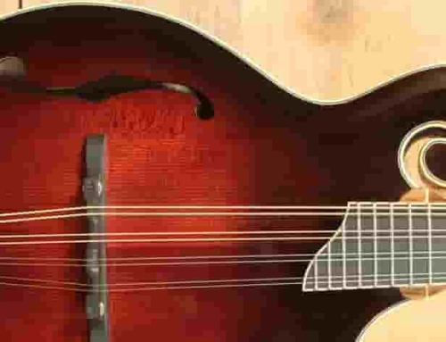 Guide: Selecting a mandolin – Terms, Glossary and Guide for Wood Selection